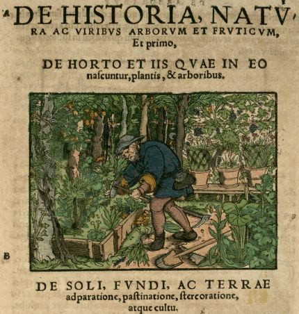 al_de-historia-natv.jpg