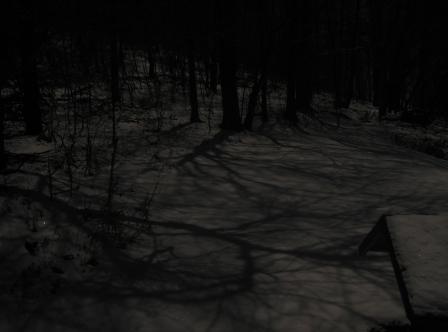 full-moon-winter-0106.JPG