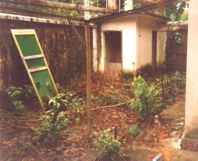 ricks-garden.jpg