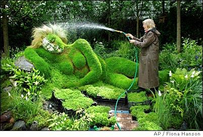 Garden Design Garden Design With Plants For My Landscaping Plan - evergreen shrub garden design