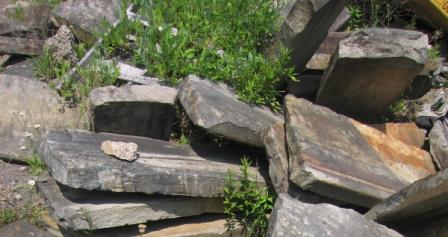 curbstone piles