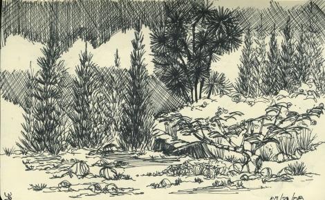Moleskine doodle using Itoya pens