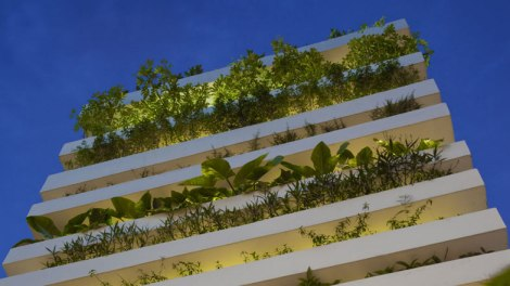 Stacking Green in Ho Chi Minh City