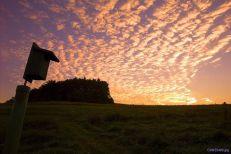 NJC 08_sunset